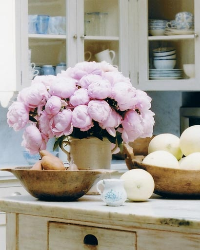 Kelly Harmon kitchen