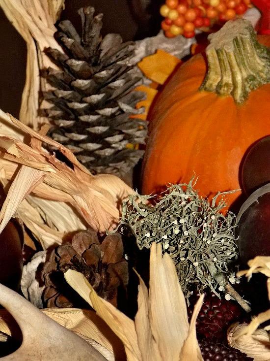 Thanksgiving-natural