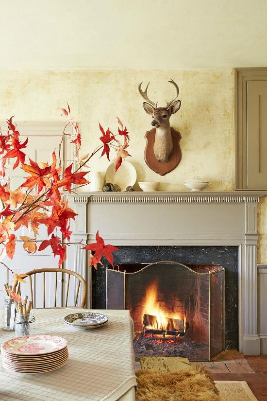 fall-decorating-ideas-leaves-display-Tara-Donne