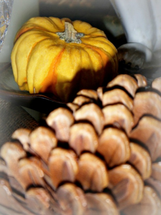 pinecone-pumpkin