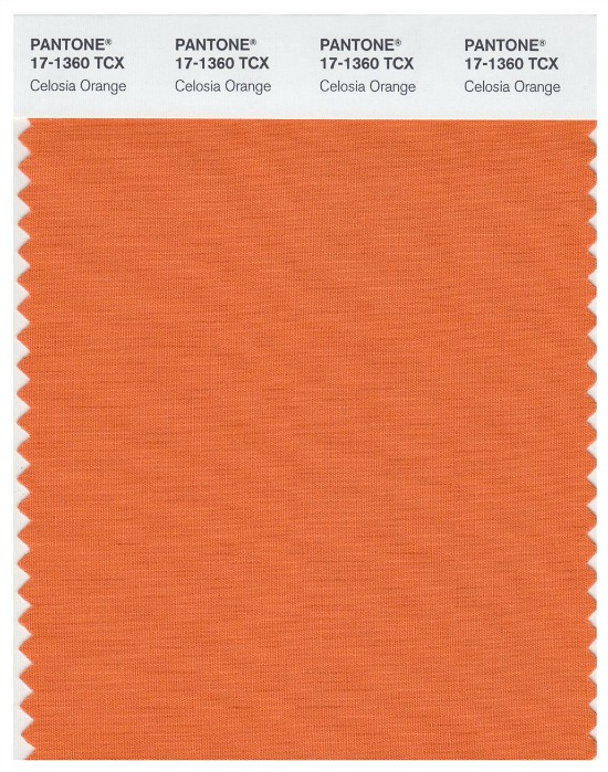 Pantone-Celosia-Orange
