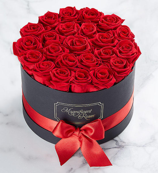 Magnificent Roses Preserved Red Roses