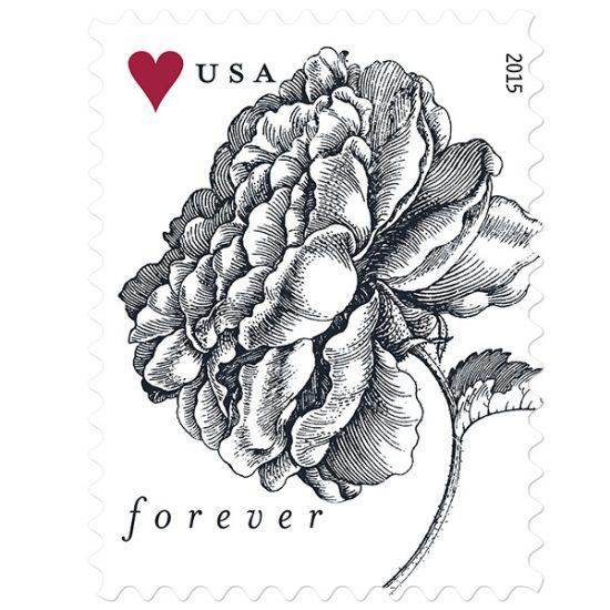 rose-stamp