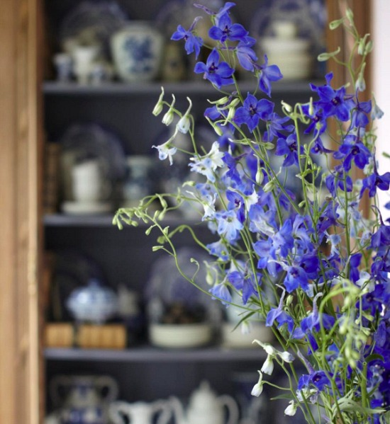 Delft-blue-fresh-flowers