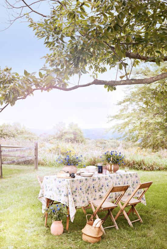 backyard-picnic-Martha-Stewart-photo-Pernille-Loof