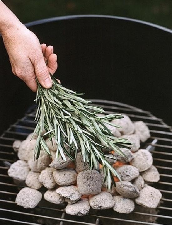 sage-over-charcoal