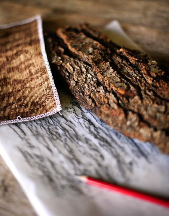 fall-oak-bark-barry-dixon1