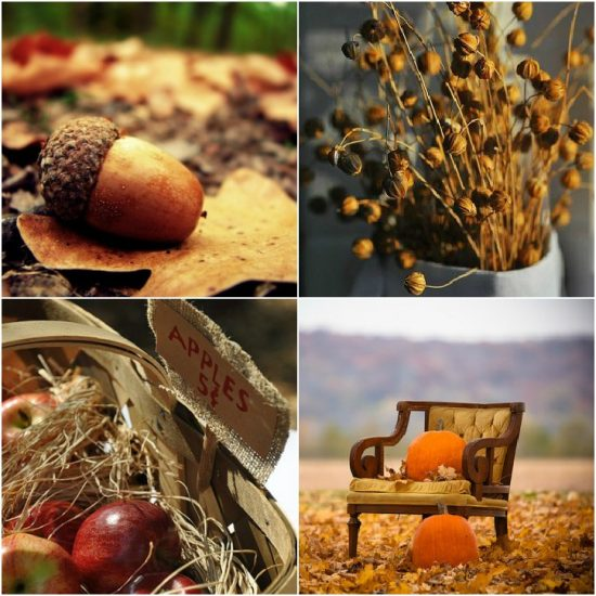 Fall home decor ideas places in the home - Fall natural decor ideas rich colors ...