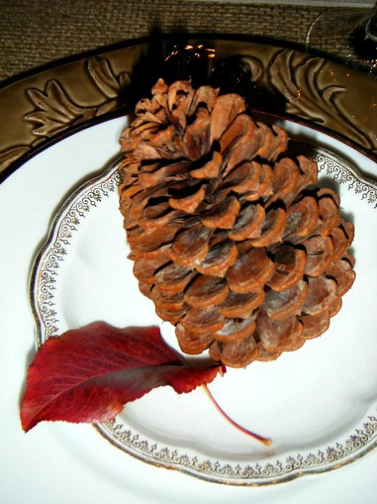 pinecone-in-plate