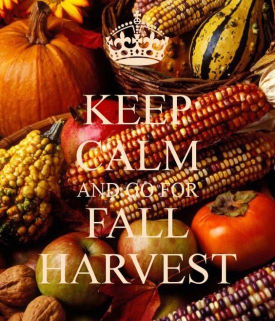 keep-calm-fall-harvest