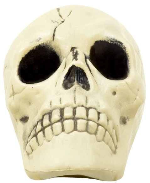 skeleton-head