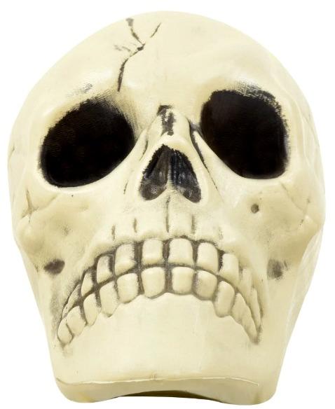 skeleton-head