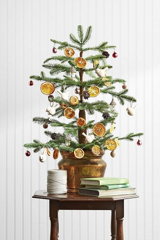 Christmas crafts citrus