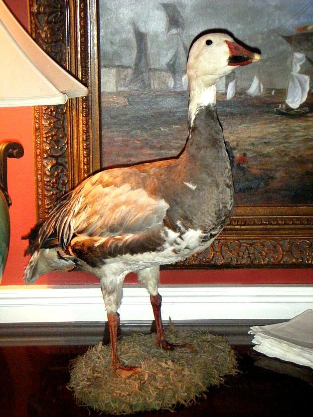 Christmas-goose1
