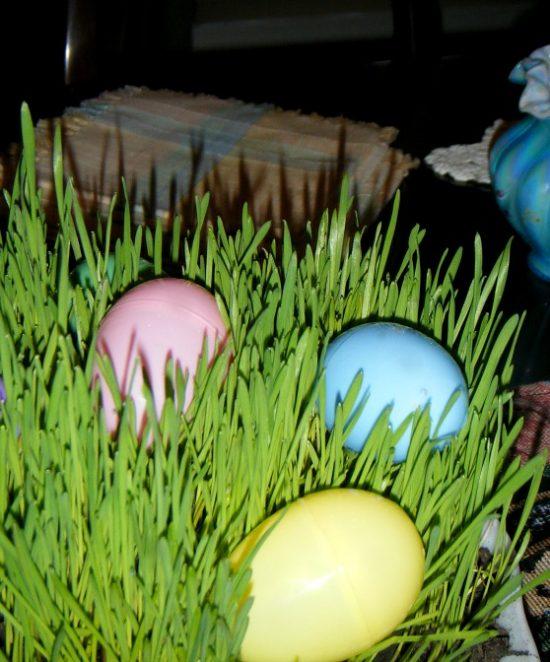 living grass Easter basket