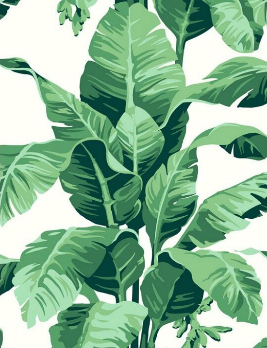 Pacifico Palm Floral Wallpaper Roll