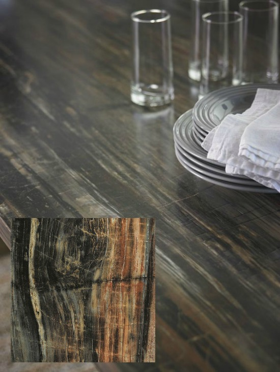 Petrified Wood with Etchings Finish