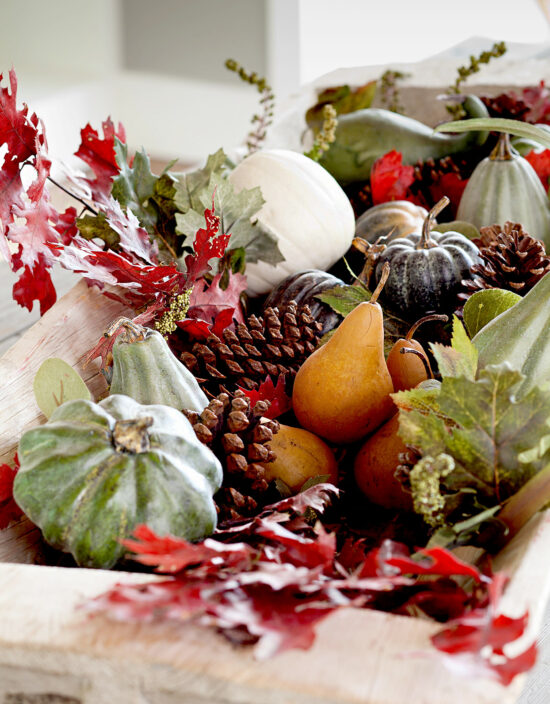 fall-arrangement-fruits-pinecones-leaves-gourds-photo-Edmund-Barr