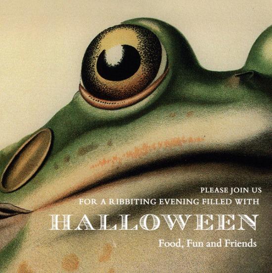 frog-john-derian
