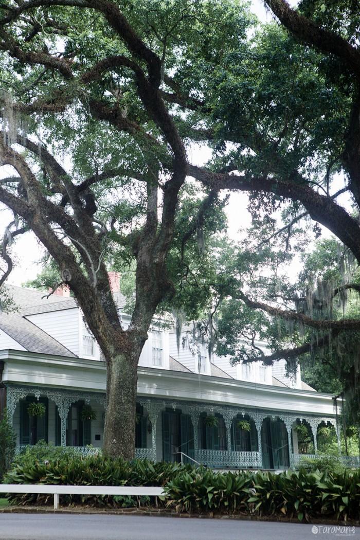 myrtles-plantation