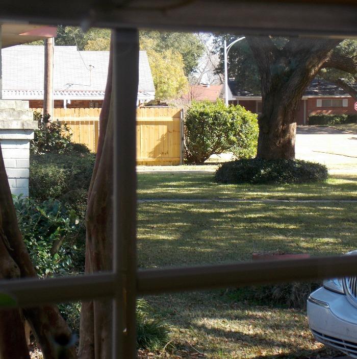 kitchen-window-view1