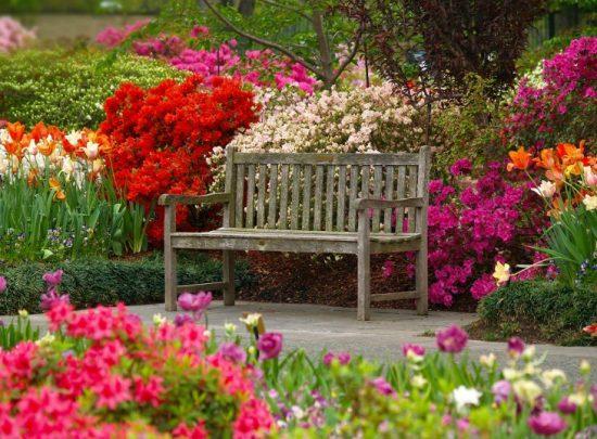 Dallas-Arboretum-Botanical-Garden