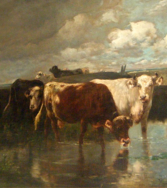 cow-oil-on-canvas