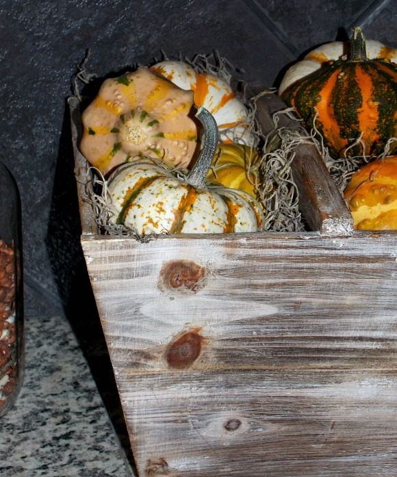 decorative-gourds-squash
