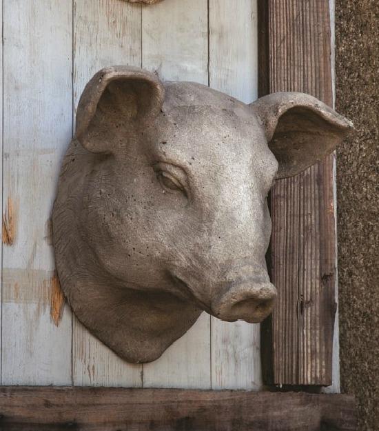 pig head wall mount