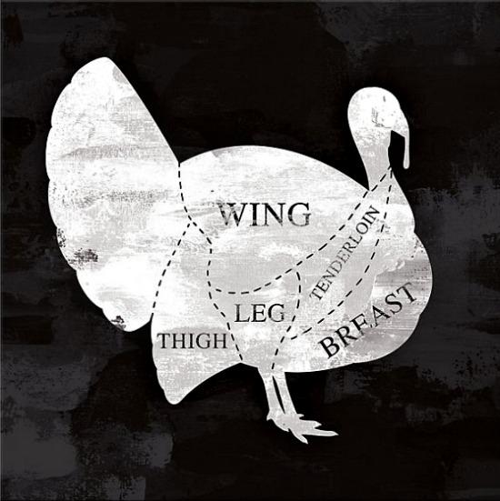 Designs Direct Turkey Anatomy 20-Inch Square Canvas Wall Art
