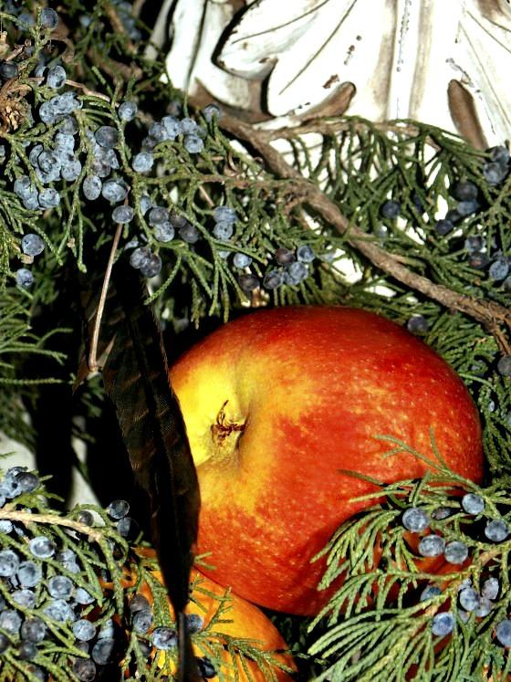 apple-orange-berries-3