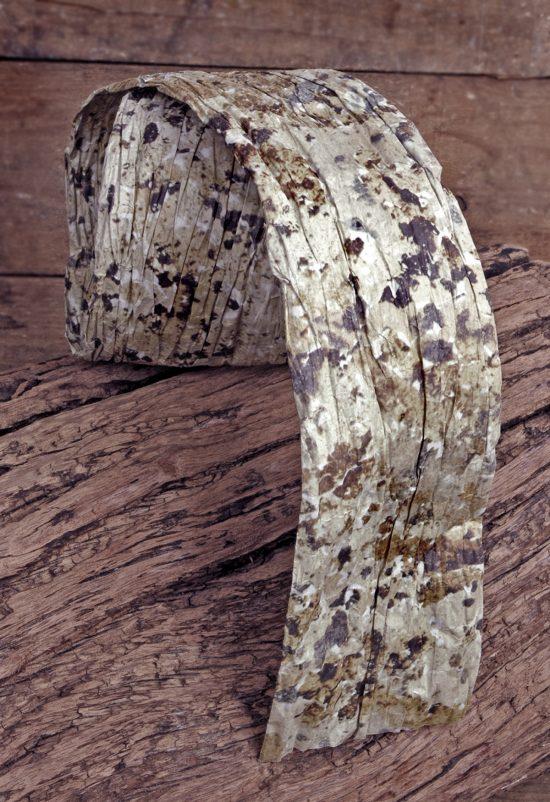 paper-ribbon-birch-print-2-5-2-e