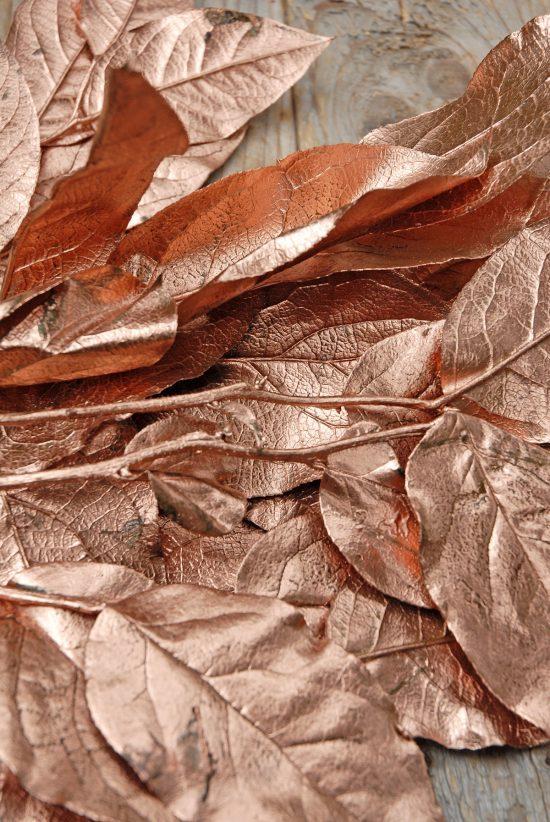 preserved-salal-tips-copper-4