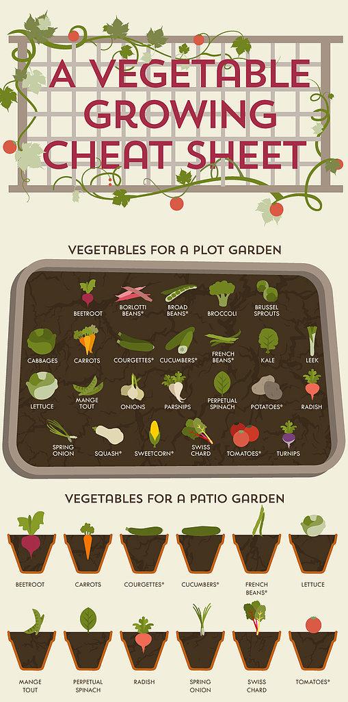 Vegetable-Growing-Cheat-Sheet