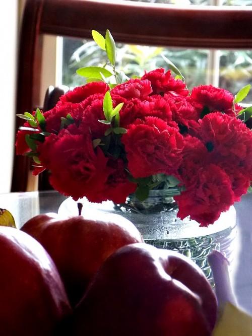 carnations2