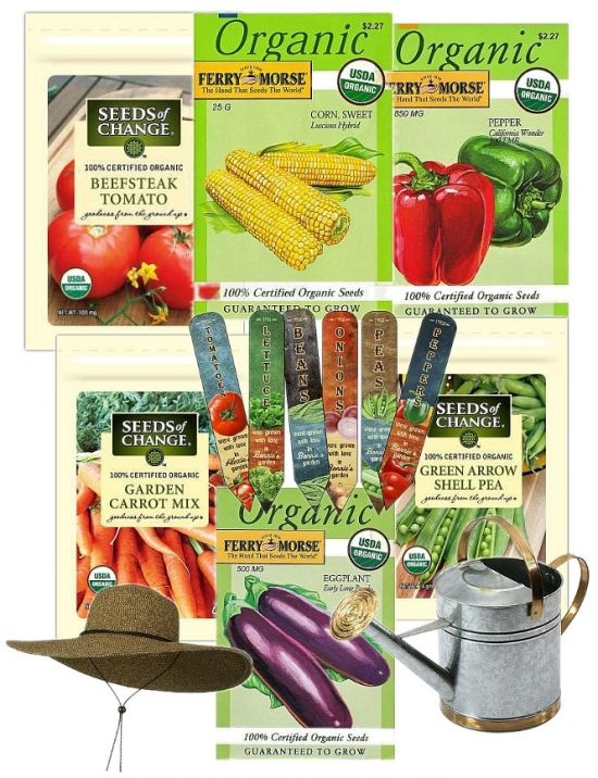 How Does Your Summer Vegetable Garden Grow