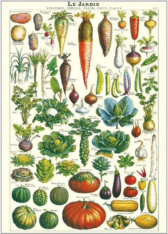 le-jardin-poster