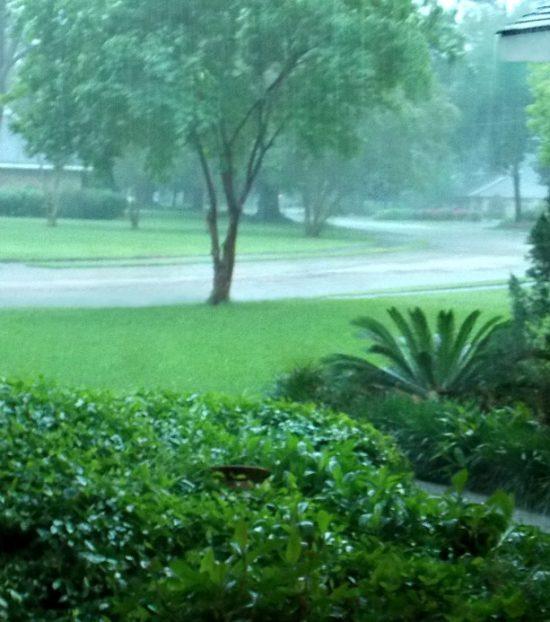 rainy-day-in-the-neighborhood
