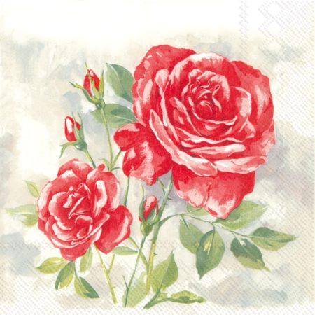 rose-boutique-paper-cocktail-napkins