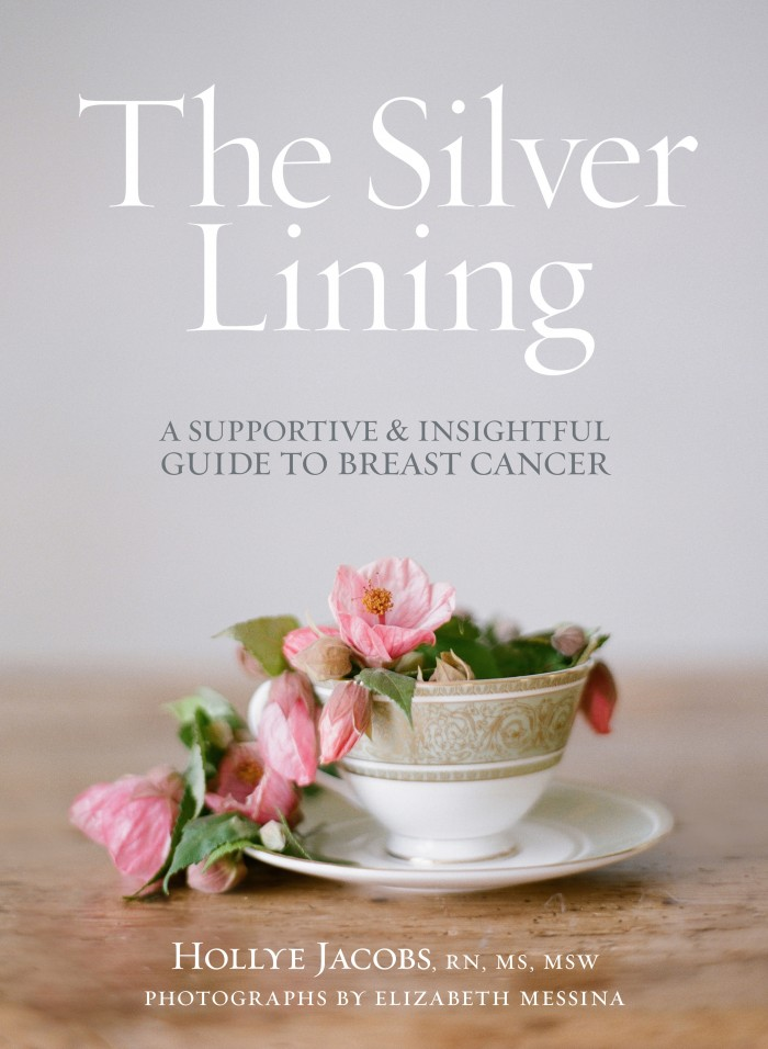 The Silver Lining Companion Guide Cover (English)