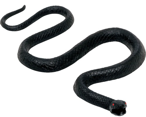 black-rubber-snake