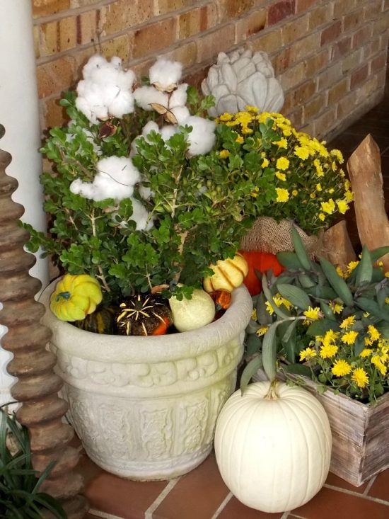 front-door-arrangement-for-fall