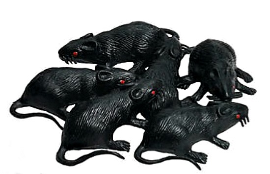 rubber-rats