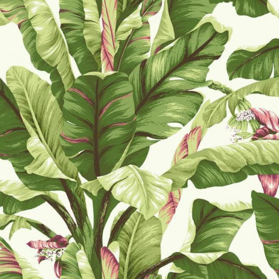 Banana_Leaf_Wallpaper_in_Green_and_Pink_design_by_York_Wallcoverings_aa448458-675c-428d-ad2a-0baa567e685a_2048x2048