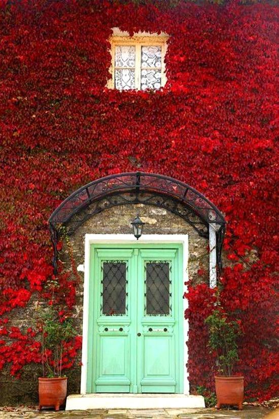 green-front-doors