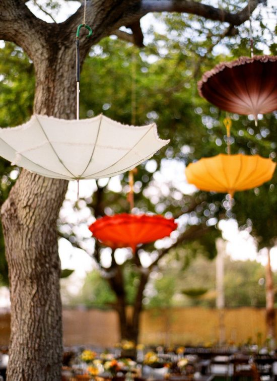 umbrella-from-tree