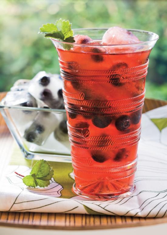 berry-splash-family-friendly-SL-photo-Beth-Dreiling-Hontzas