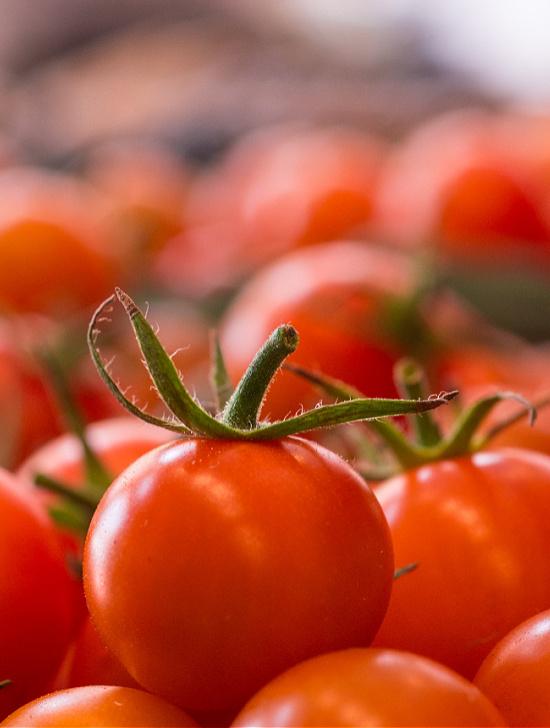 cherry-tomatoes (1)