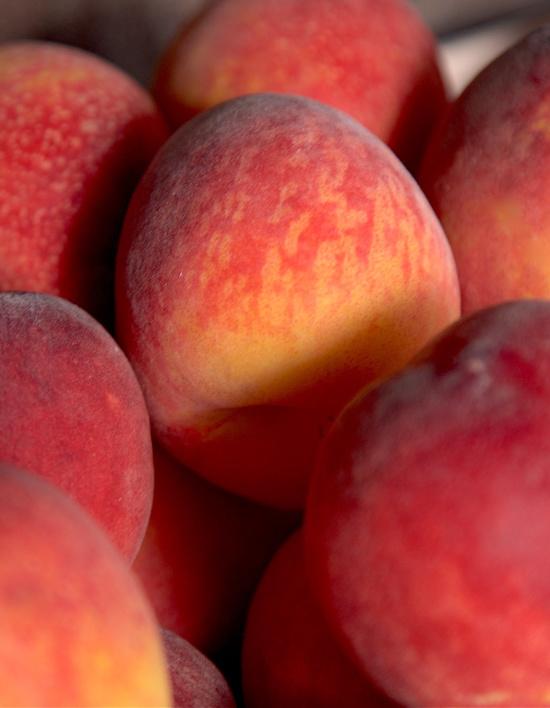 picked-fresh-peaches