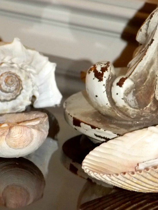 shells-on-buffet